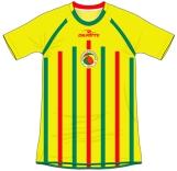 2008 amarelo
