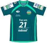2010 VEC (verde)