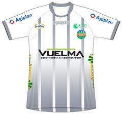 2017 VEC (cinza)