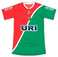 2012 UFF (tricolor)
